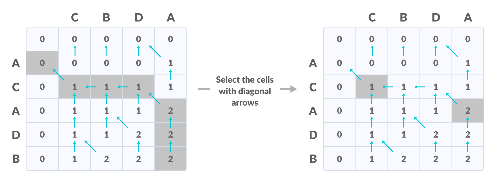 Longest Common Subsequence create a path