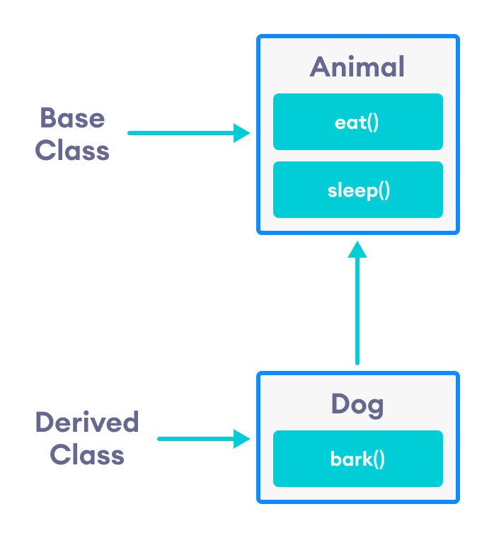 Dog class inherits from the Animal class