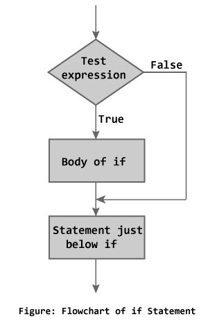 Flowchat of if statement in C++ Programming