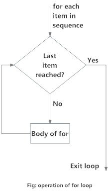 R for loop flowchart