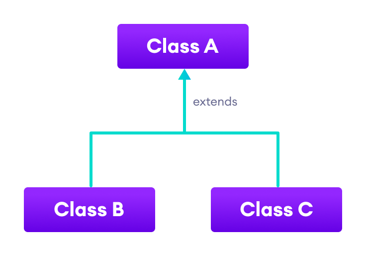 Both classes B and C inherit from the single class A.