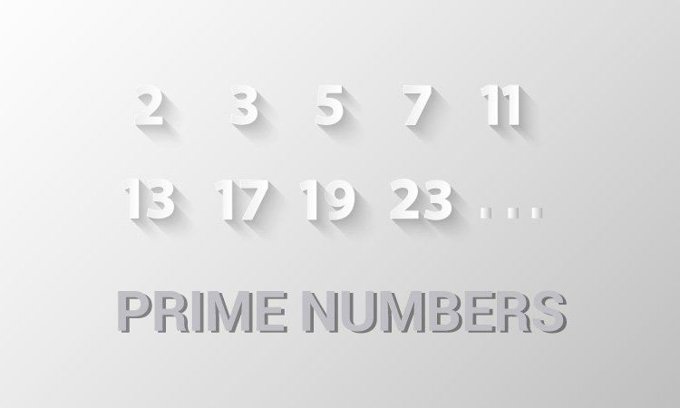 Prime numbers between two numbers using function
